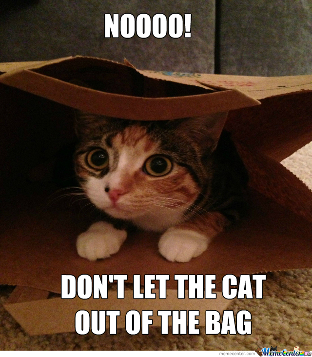 letting-the-cat-out-of-the-bag_o_2024721